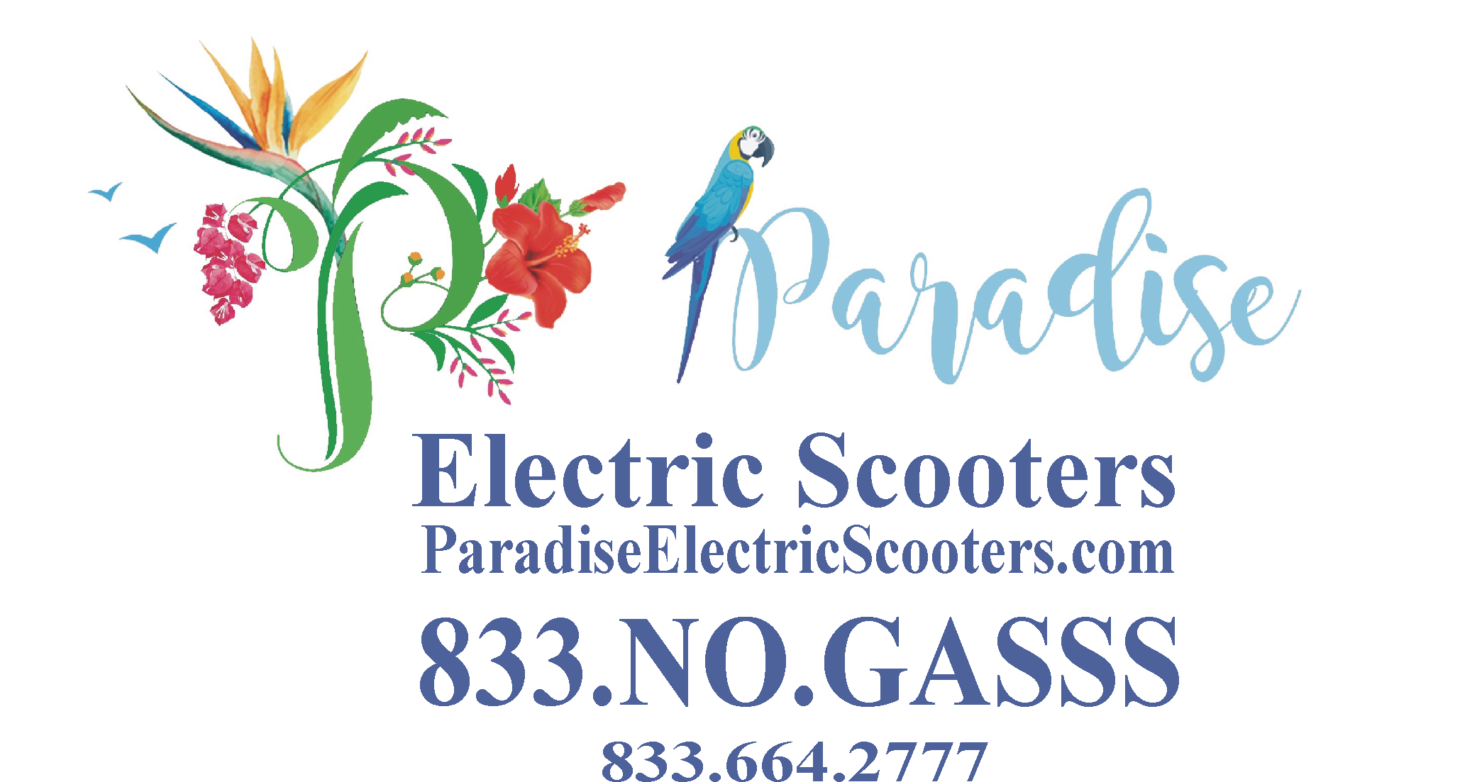 Paradise Electric Scooters